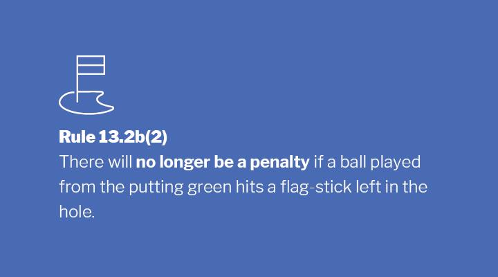 Rule 13.2b(2) Image