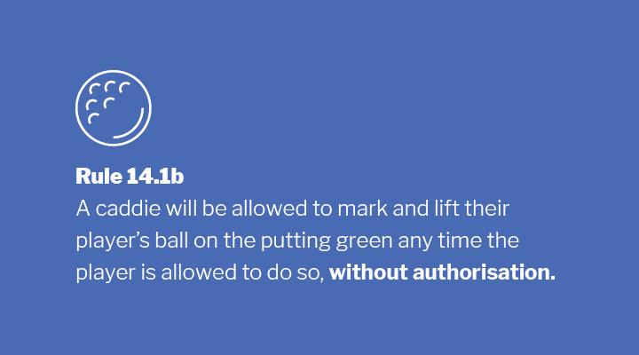 Rule 14.1b Image