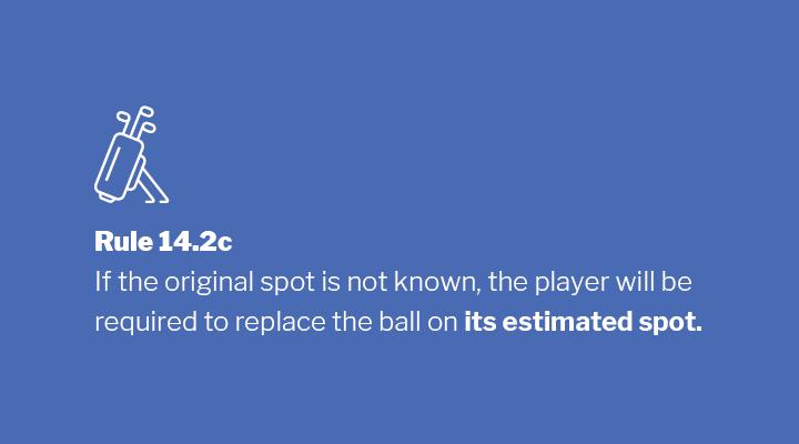 Rule 14.2c Image