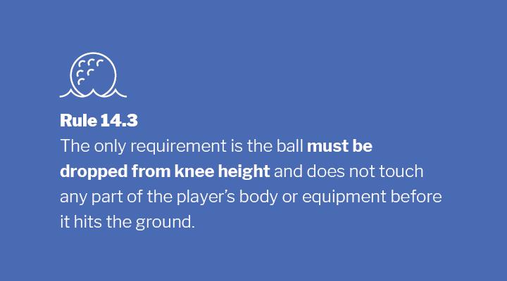 Rule 14.3 Image