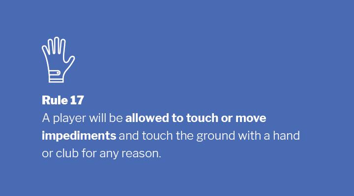 Rule 17 Image